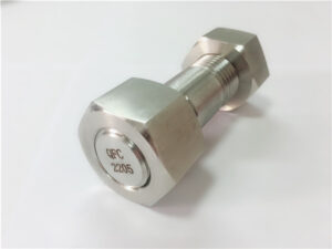 No.75 - Kiváló minőségű duplex 2205 rozsdamentes acél csavar